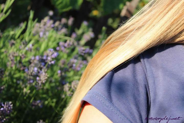 levanduľa proti vypadávaniu vlasov
