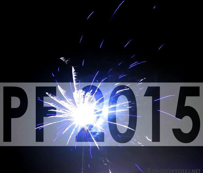 Najčítanejšie články za rok 2014 &; pf 2015 | kokosovyolej.net
