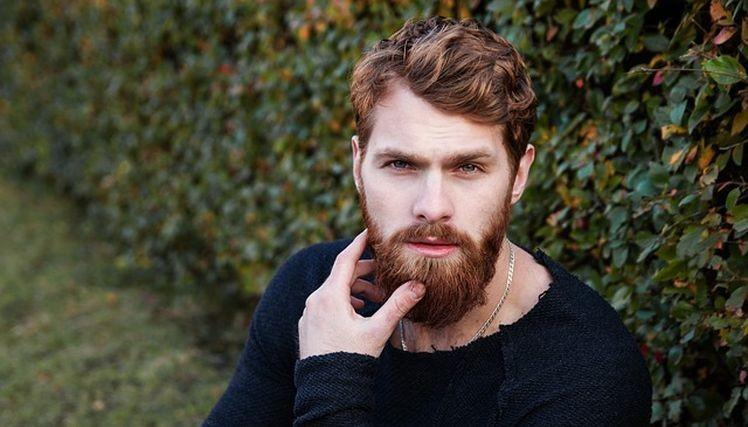 regeneracny olej na bradu a fuzy, olej na rast brady