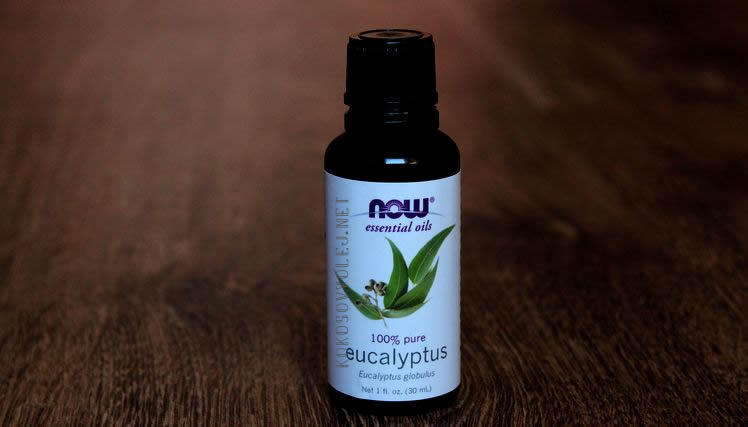 eukalyptovy olej